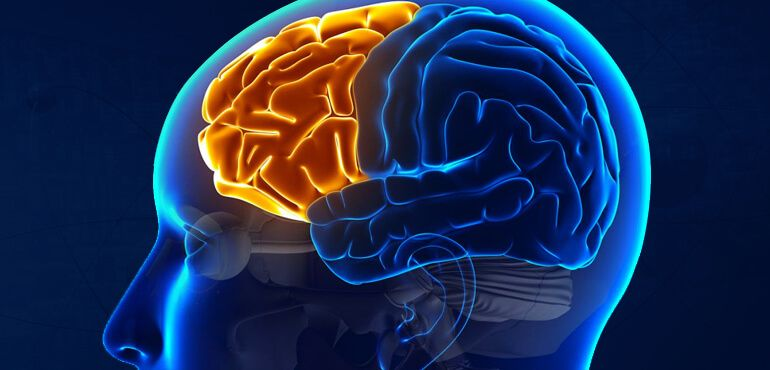 Facts about human brain memory power and capacity ccuart Images