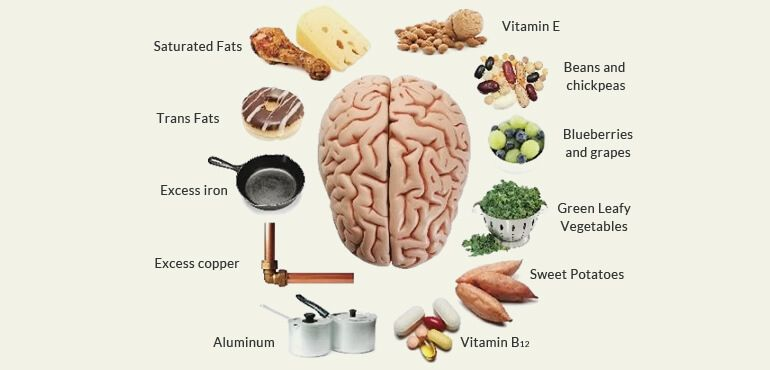 Necessary Nutrition for The Brain to Enhance Brain Power
